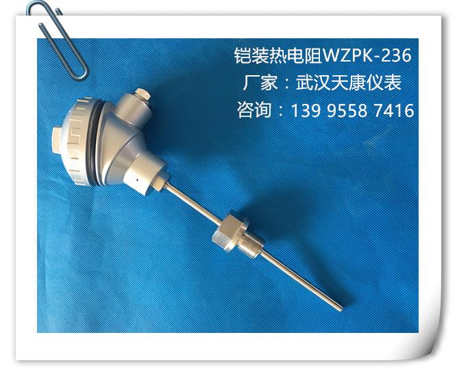 接线盒,优质不锈钢保护管      型号: wzpk-136/236/231 分度号: pt